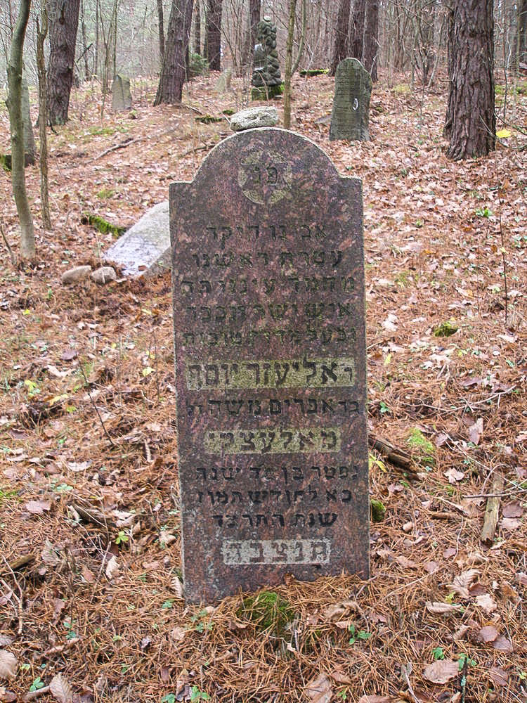 Jewish cemetery in Narewka, the grave of Eliezer Josef Malecki, photo by Tomasz Wiśniewski
