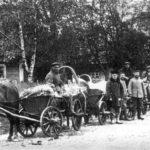 Targ w Białowieży, 1917. Zdjęcie Piotra Bajko.
