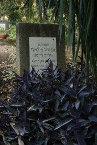 grób Awigajil (3)